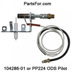 PP224