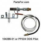 PP224 Desa LP ODS pilot assembly for ventfree PROPANE