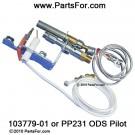 103779-01 NG ODS Pilot