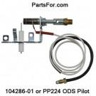PP224 Desa LP ODS pilot assembly for ventfree PROPANE