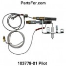 PP225 LP ODS Pilot assembly for Desa heating products